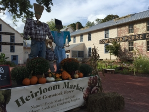 Scarecrow Family at the New Heirloom Market on Main St.